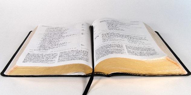 aufgeschlagene Bibel,© ELKB / Poep