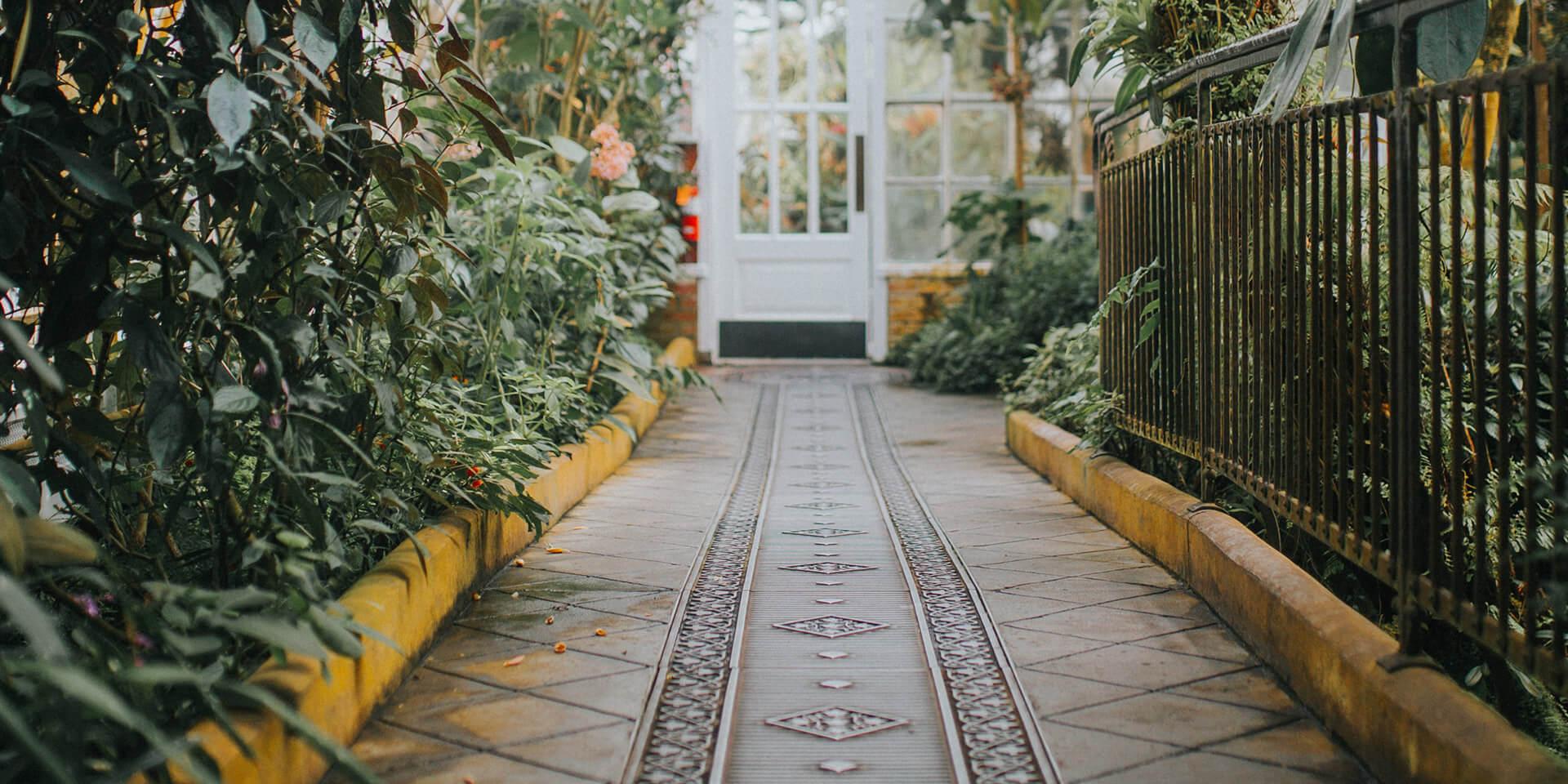 Tür im Tropenhaus